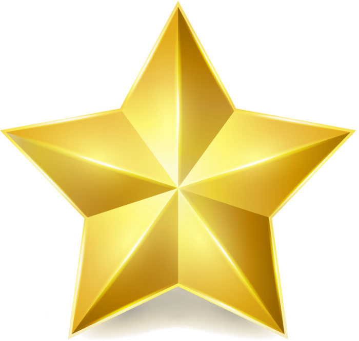 Gold Star Rating sums up to the 5 star gold rating on Fantastic Fireworks has on trust pilot.