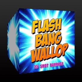 Flash Bang Wallop - 25 shot firework